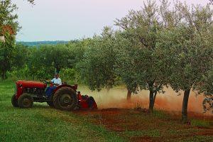 kupnja traktora potpore